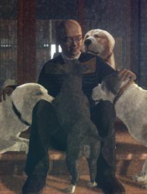 《狗狗伤心志》