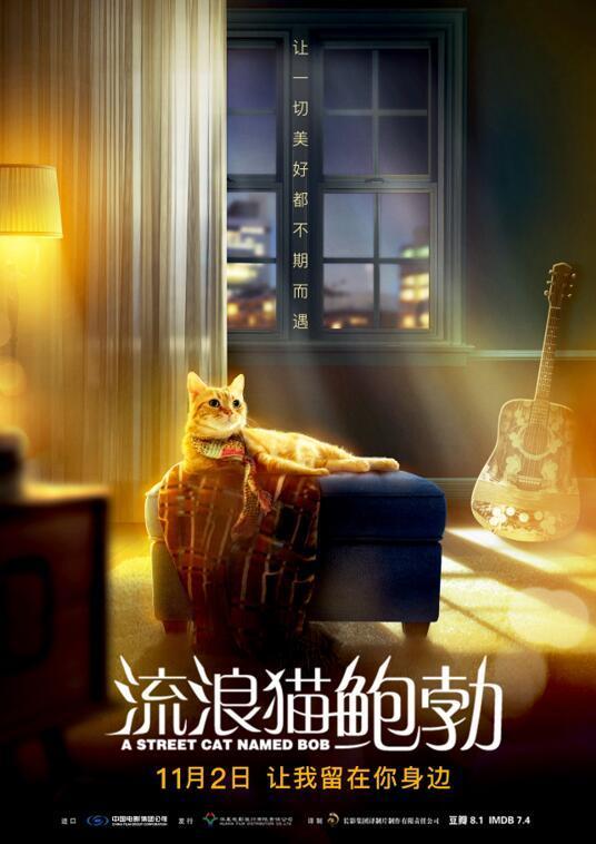 《流浪猫鲍勃》(A Street Cat Named Bob)