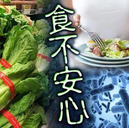 全美23州出現大腸桿菌疫情,羅馬生菜請停止食用!