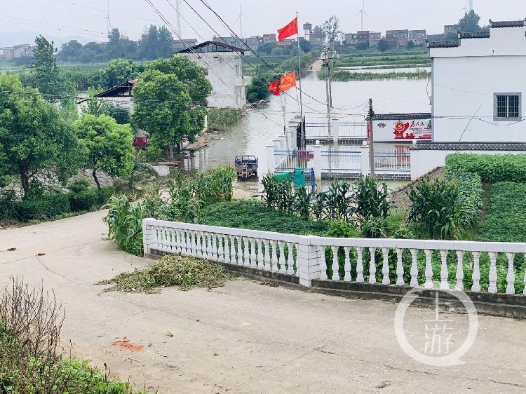 ▲7月13日,江西九江市江洲鎮,低窪地帶的水泥路已被江水淹沒。攝影/上游新聞記者 時婷婷