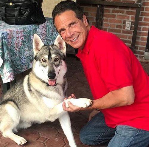紐約州長安德魯古莫和他的狗隊長。